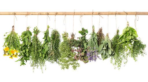 gyógynövények a fej öblítésére pikkelysömörre pikkelysömör kezelése psoralennel