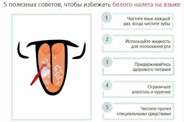 A szamóca gyakoribb betegségei - Kwizda Agro