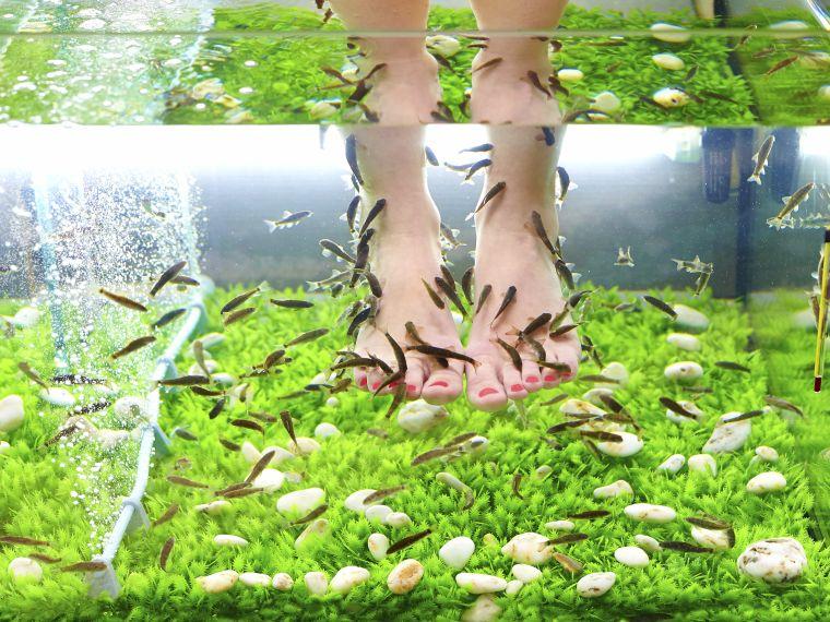 zuzmó pikkelyes fotókezelés a lábak között vörös foltok hogyan kell kezelni a fotókat